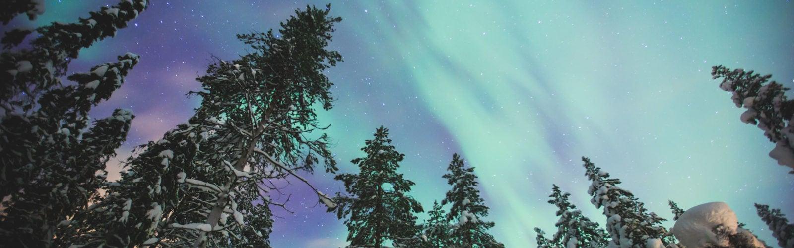 northern-lights-norwegian-lapland