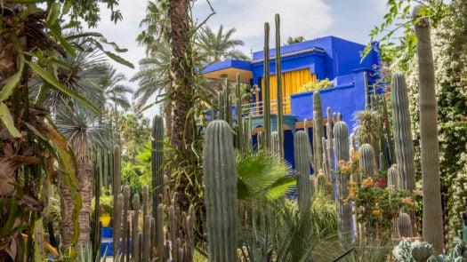 jardin-marjorelle-marrakech-morocco