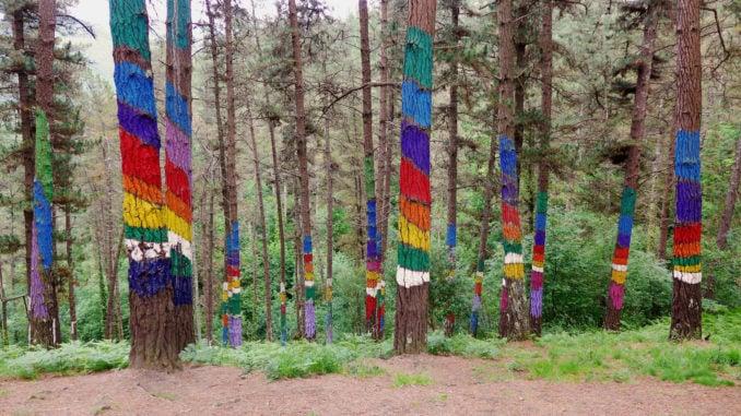 oma-forest-san-sebastian-spain