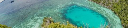 diving-indonesia-raja-ampat