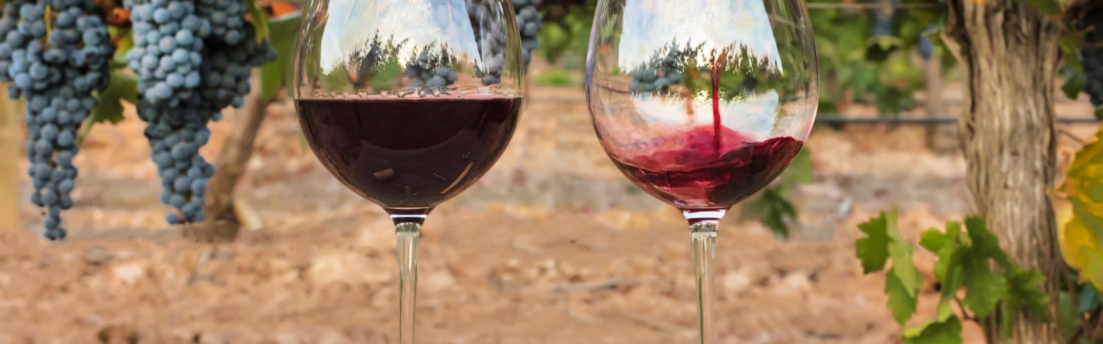 spain-wine-pouring