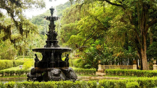 botanic-garden-rio-de-janeiro-brazil