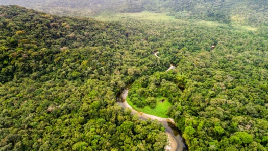 colombia-amazon-aerial