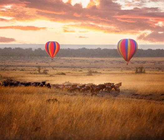 Sunrise in Maasai Mara on Kenya Safari
