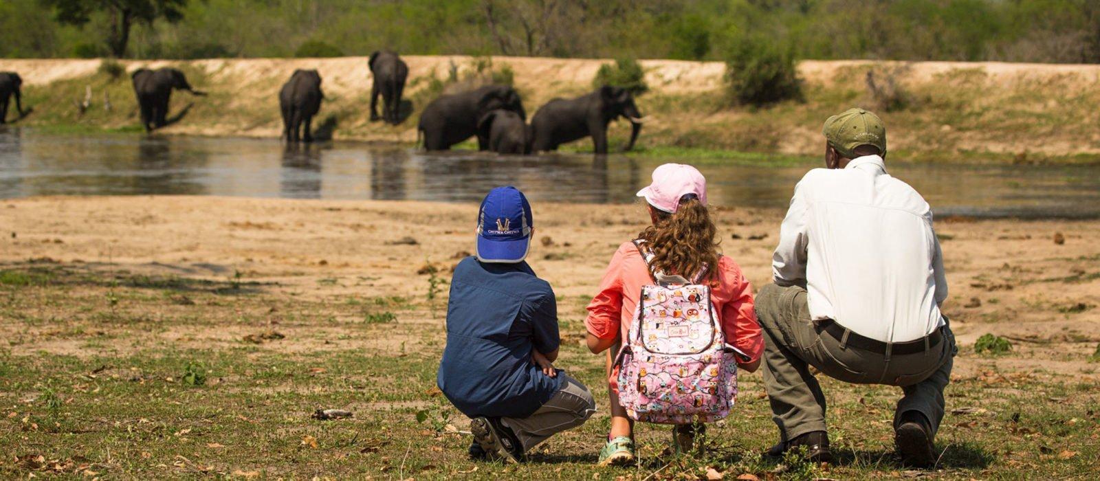 kids-animals-safari-chitwa-chitwa