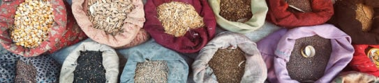 aerial-view-indian-spices