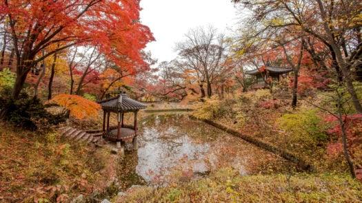 changdeokgung-palace-south-korea