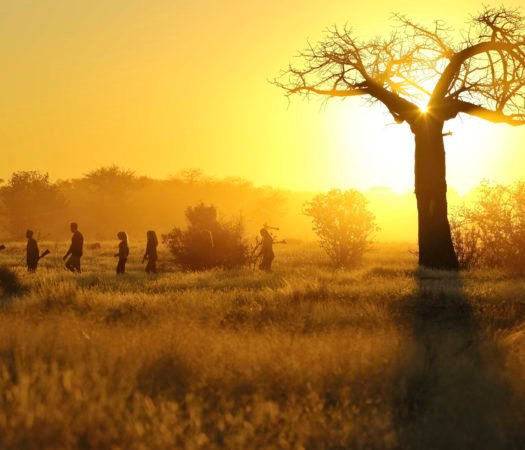 ikuka-safari-camp-sunrise