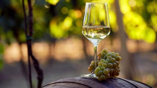 white-wine-barrel-grapes