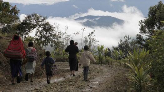 rondon-ridge-walk-papua-new-guinea