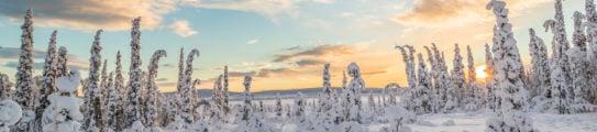 swedish-lapland-landscape-sunlight