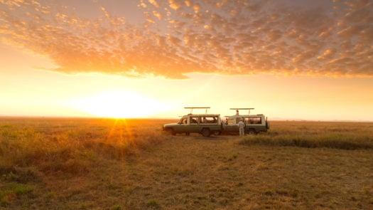 serengeti-safari-camp-game-drive