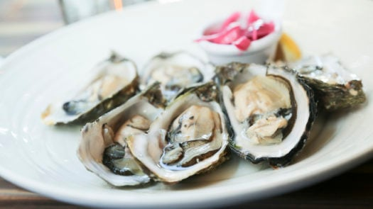 oysters-galway-ireland