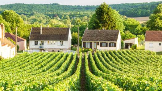 champagne-house-langres-france