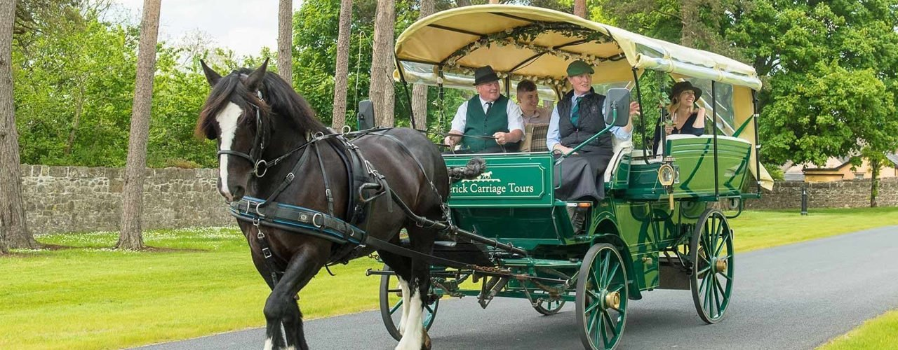 A horse-drawn carriage at Adare Manor.