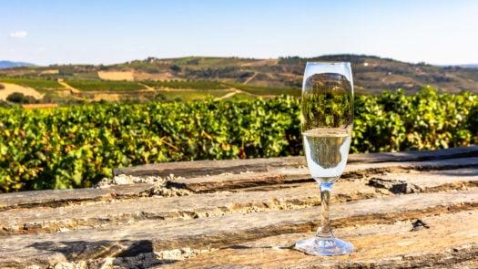white-wine-douro-valley-portugal