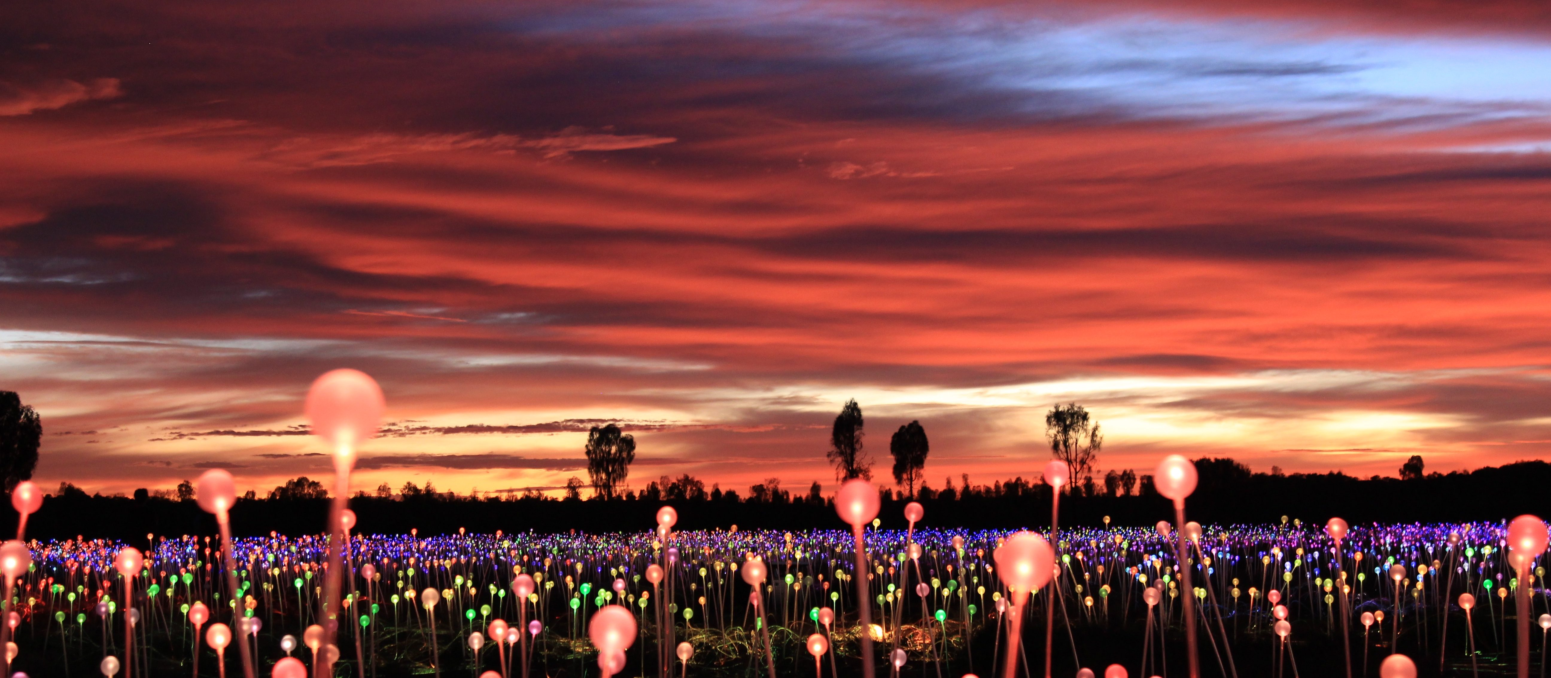 uluru-australia-field-of-light-bruce-munro