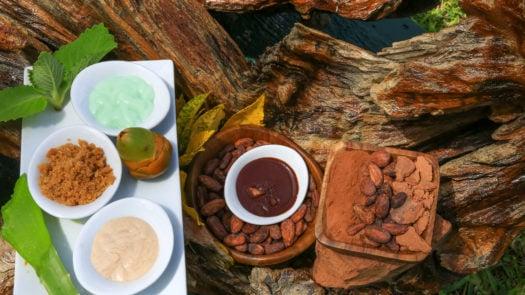chocolate-spa-treatment-belize
