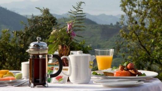 Al fresco breakfast, Clouds Mountain Gorilla Lodge, in Uganda's Bwindi Impenetrable Forest