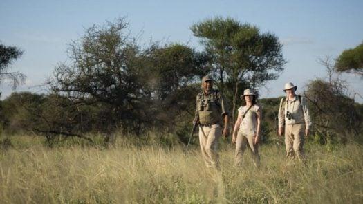 Olivers Camp Walking Safari, Africa