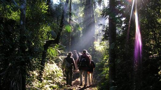 Yacutinga Lodge rainforest walk